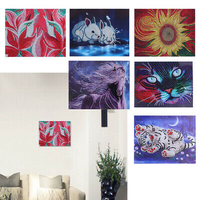 Crystal Embroidery Arts Kits Special Shaped Diamond Painting for Home Decor