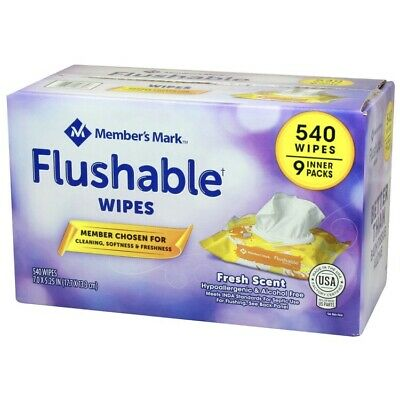 Members Mark Hypoallergenic Alcohol Free Flushable Gentle Wipes (9 Pack, 540st)