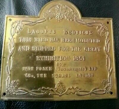 Rare  English Exhibition Antique Plaque