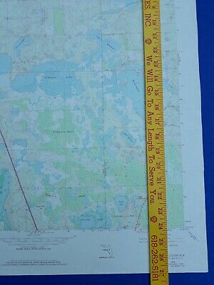 Lake Louisa Florida 1981 Original Vtg Geological Survey Topo Quadrangle Map