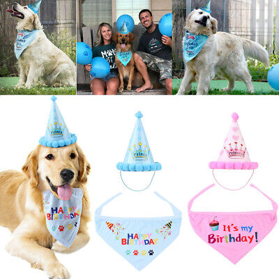 Pet Birthday Hat With Neckerchief For Dog Cat Birthday Party Fancy Dress New LO