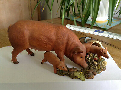 Country Artists Tamworth Pig & Piglets  >