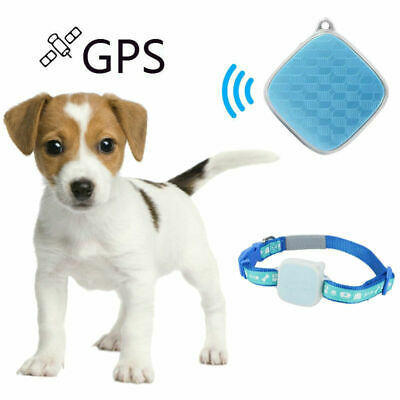 Mini GPS Pet Tracker Collar Real Time Locator Waterproof Tracking Device for Dog
