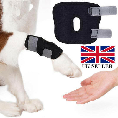 Lots Dog Leg Brace Hock Joint Knee Support Rear Therapeutic Pet Leg Protector CR