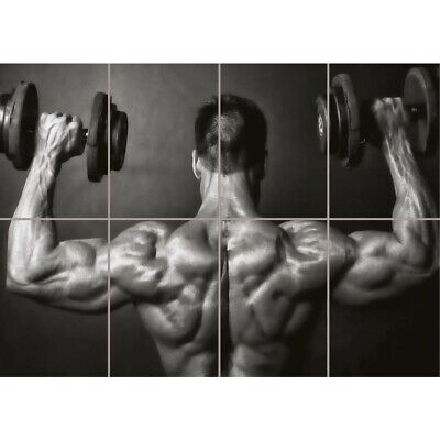 Bodybuilding Bw Weight Lifting Gym Fitness Giant New Art Print Poster
