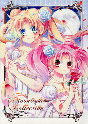 Sailor Moon COLOR Doujinshi Illustration Book Serena Rini Hotaru Luna Moonlight