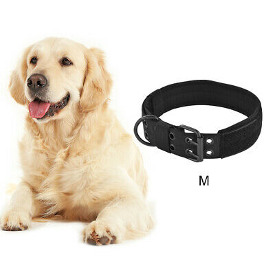 Adjustable Padded Dog Collar with Metal D-ring Buckle for Large Dog Black PS323