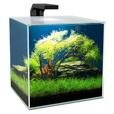 Ciano Cube Aquariums 5 10 15 with LED Light, Internal Filter, Lid Fish Tank