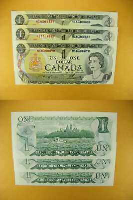 3238 Canada Lot of 3 1973 $1 GemUNC Consecutive