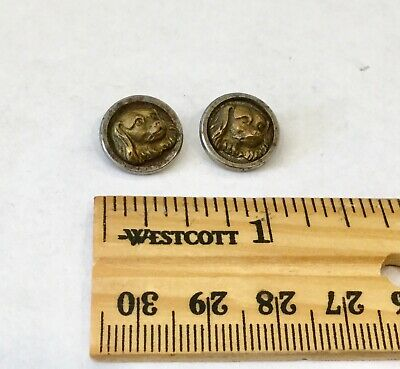 Pair of Antique Steel Cup Brass Dog Head Button