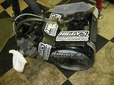 go kart racing Briggs and stratton animal engine built by Higgy's House of power