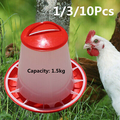 1.5kg Food Feeder Chicken Quail Chicks Hen Duck Drinker Poultry Water  UK