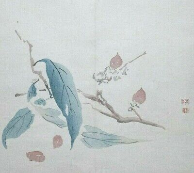 JAPANESE HEARTNUT / WALNUT : ORIGINAL MEIJI JAPANESE WOODBLOCK PRINT By GYOKUSHO