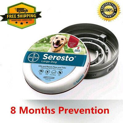 Seresto Flea and Tick Collar for Large Dog (Over 18lbs) 8 Month Protection