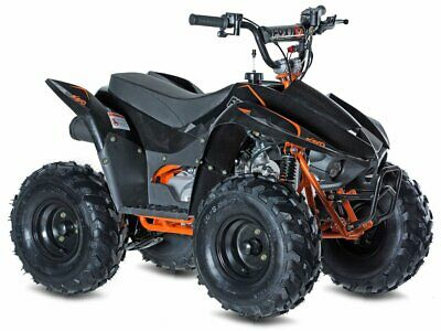 Access Motor Kayo Fox 70 Kinder Quad Modell 2019