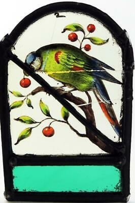 BIRD WITH FRUIT STAINED GLASS PANEL 17th CENTURY