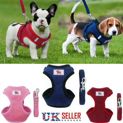 Small Dog Harness Soft Mesh Step-in Puppy Harness Leash Set Pet Jacket Vest SV