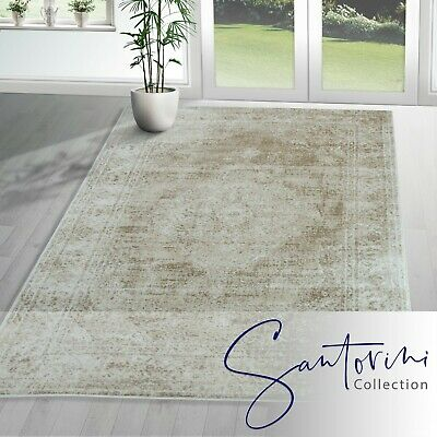 Extra Large Lounge Conservatory Rugs Medallion Design Rug Oriental Hall Runners
