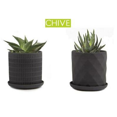 Indoor & Outdoor Planter Plant Pot Flower Pot for Cacti and Small Buds Chive