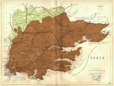 ESSEX. Geological map. STANFORD 1880 old antique vintage plan chart