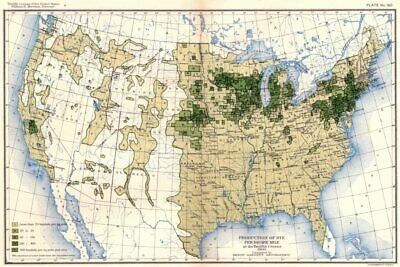 USA. Production of Rye / sq mile at 12th census  1900 old antique map chart