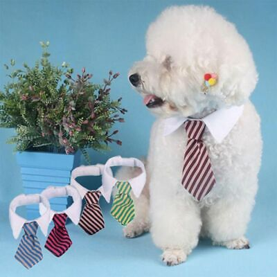 Dog Cat A Striped Bow Tie Collar Pet Adjustable Neck Tie White Collar for Tuxedo