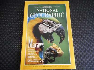 National Geographic Macaws Vol 185 / N° 1 / January 1994 ( En Anglais )