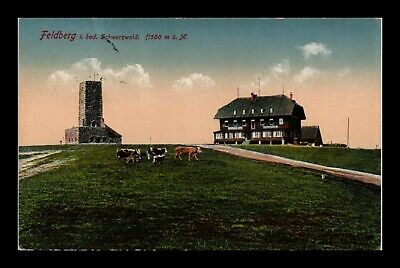 Dr Jim Stamps Feldberg Mountaintop Building Tower Cows Germany Postcard