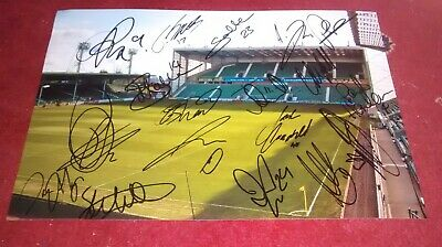 Hibs 2019-20 Easter Road Squad multi HAND SIGNED 12X8 PHOTO. 18 signatures