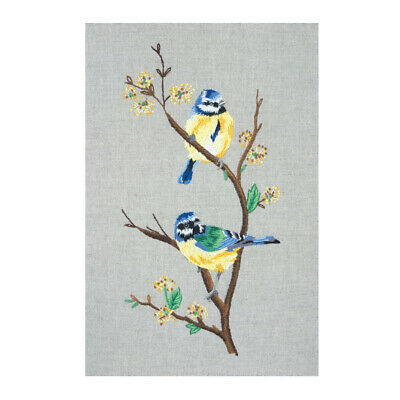 ANCHOR   Embroidery Kit: Blue Tits   PE650