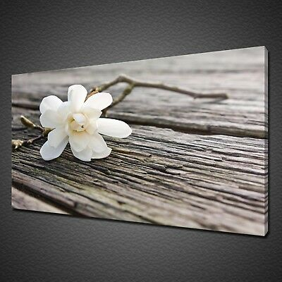 White Magnolia Flower On Wooden Board Canvas Print Wall Art Picture Photo
