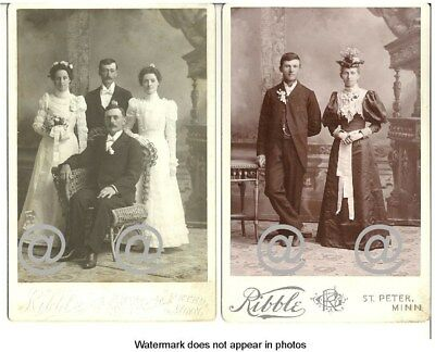 Lot 2 Victorian Antique Cabinet CardPhotos Wedding Party and Fashionable Couple