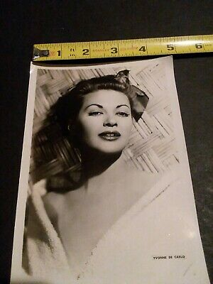 Vintage Publicity Photo LILY MUNSTER Yvonne De Carlo 5 by 7 bw glamour shot