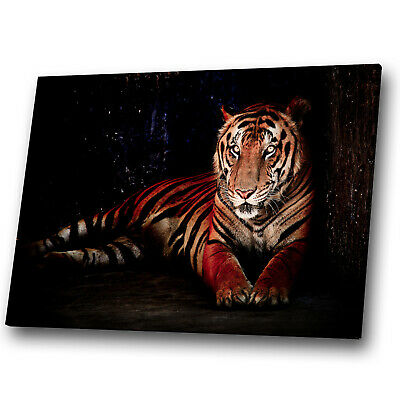 Animal Canvas Prints Framed Wall Art Small Picture Black Forest Tiger Orange