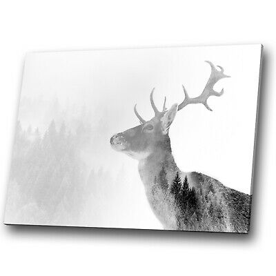 Animal Canvas Print Framed Kitchen Wall Art Small Picture Stag Deer Black Forest