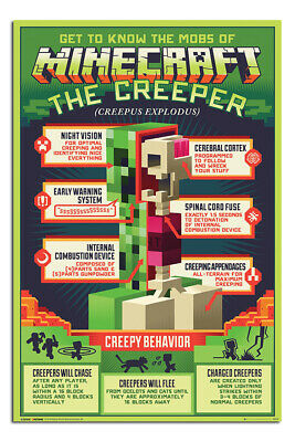 Minecraft Poster Creepy Behaviour Official Licensed 24 x 36 Inches