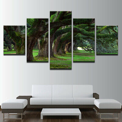 Nature park tree grass landscape 5 panel canvas Wall Art Home Decor Print Poster