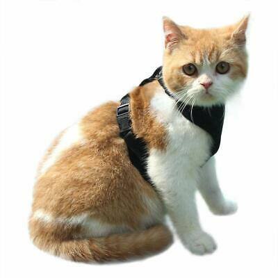 EXPAWLORER Escape Proof Cat Harness - Soft Mesh Adjustable Cat Harness Vest for