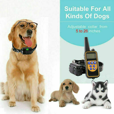 Dog Shock Collar Remote 800 Yard Pet Training Waterproof Electric Rechargeable W