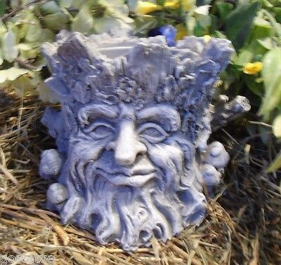 Latex face planter mold with plastic backup log mold concrete plaster mould