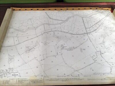 Large Old original 1909 Antique Map of Ewhurst area Sussex