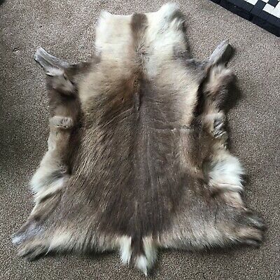 Large Decorative Real Reindeer Hide Rug - Taxidermy Occult Oddity Scandi Cosy