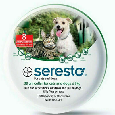 Seresto Bayer Collare per cani sopra oltre 8 kg medio grandi Antiparassitario IT
