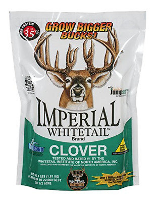 Whitetail Institute Imperial Clover Food Plot Seed (Spring and Fall Planting),