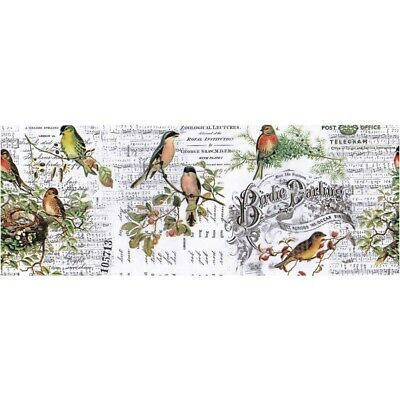 "Tim Holtz Aviary Idea-Oligy Collage Paper 6"" x 6 yards"
