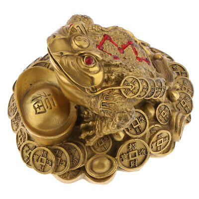 Chinese Frog Toad Feng Shui Money Fortune Wealth for Shop Counertop Decor L