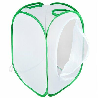 Collapsible Insect And Butterfly Habitat Net Pop Up 23.6 Inches Tall White Kids