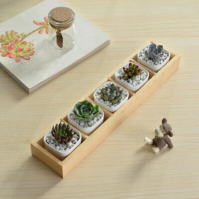 Home Wooden Succulent Plant Fleshy Flower Pot Box Tray Decorative 5 Grid Holder