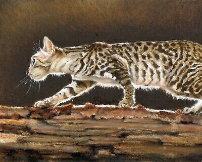 Original Oil Art Portrait Painting CALIFORNIA SPANGLED CAT Brown Tan Wood Signed