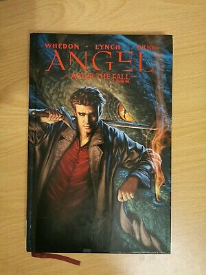 Angel. After The Fall. Graphic Novel Volume 1 (Hardcover)